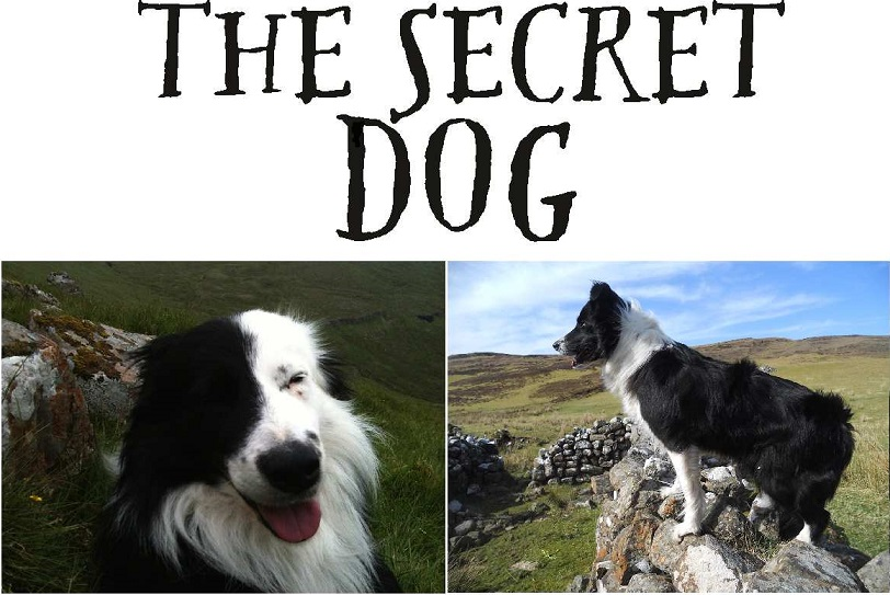 The Secret Dog